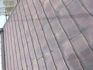 屋根高圧洗浄水洗い